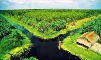 Delta del río Mekong hacia un desarrollo sostenible ante el cambio climático
