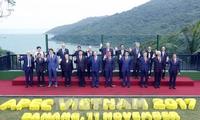 Prensa malaya valora altamente el papel de Vietnam en el Año del APEC 2017