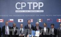 Vietnam ejerce papel importante en estrategia japonesa sobre CPTPP