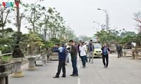 Exponen plantas y objetos ornamentales en Vietnam