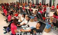 """Campaña """"Recorrido Rojo"""" de Vietnam finaliza con más de 42 mil unidades de sangre"""