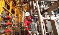 Grupo de petróleo de Vietnam sobrecumple metas en primer semestre