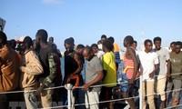 Unos 800 inmigrantes intentan entrar en España