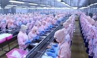 ONU propone fomentar recursos financieros por el desarrollo sostenible de Vietnam