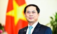 Vicecanciller vietnamita informa sobre el resultado de la 26 conferencia del APEC