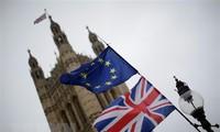 """Autoridades europeas reclaman a Londres aclarar """"su enfoque"""" sobre el Brexit"""