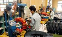 Mercado laboral de Vietnam atrae atención de numerosas naciones
