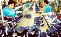 ベトナムと南ア間の貿易額、17%増加