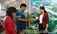 タイグエン省、省内の各村の製品の見本市を開催