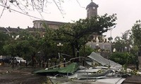 台風ダムレイ、カインホア省上陸