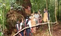 コトゥ族の森の恩に報いる儀式