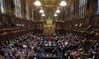 英国民のEU離脱意思、非公選議員が妨害もくろむ=国際貿易相