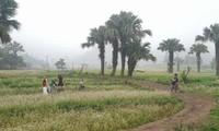 少数民族モン族の観光の村