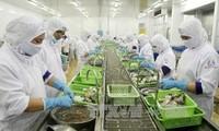 水産物の輸出 急増
