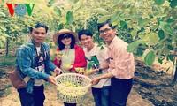ニントアン省の田舎体験ツアー