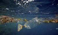 G7環境相会合 海洋プラごみ問題で連携