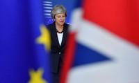 英とEUが離脱条件の草案で合意 閣議で検討へ