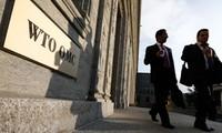 WTO 米の鉄鋼関税を本格審理へ 小委員会設置決める