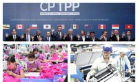 CPTPPがベトナム企業にもたらす試練