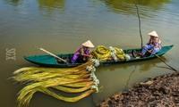 ベトナム南部の愛の歌