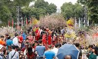 100万人が「ハノイ・日本桜祭り2019」へ