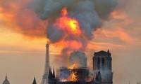 ノートルダム大聖堂から巨大絵画搬出 15点は被害なし