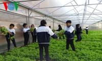 ハイテク農業に励むラムドン省の生徒たち