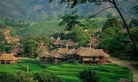 ベトナム北西部の特徴な曲