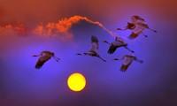 「心からの光」写真展