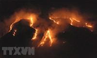 アマゾン森林火災 ブラジル 軍派遣し消火活動へ