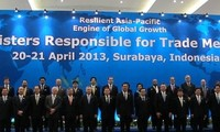 Vietnam contributes to APEC trade ministers' meeting