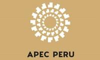 APEC summit promotes regional economic connectivity