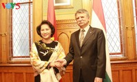 Vietnam aims to elevate relations with Czech and Hungary