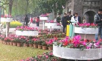 Hanoi's 2013 Spring Flower Festival honors craft villages