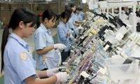 Vietnam attracts more FDI in Mekong River Delta