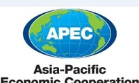 Hosting 2017 APEC Forum a priority of Vietnam's foreign policy