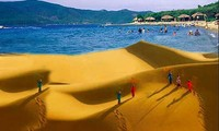 International tour operators survey Binh Thuan's tourism products