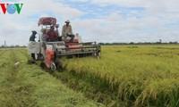 Mekong River Delta prepared for TPP participation