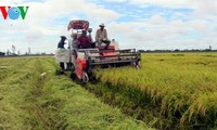 TPP, a boost for Vietnam's agricultural restructuring