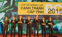 Provincial authorities contribute to Dong Thap's improved PCI in 2015