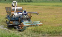 Sustainable agriculture development in ASEAN integration