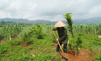 Cao Phong people participate in new-style rural development program