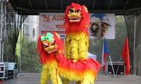 捷克亚洲文化节上的越南印象