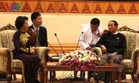 推进越缅国会合作