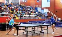 Le 2e tournoi international de tennis de table de Vinh Long prend fin