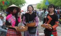 Ouverture de la fête vietnamienne à Kanagawa (Japon)