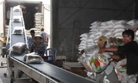2018: le Vietnam pourrait exporter 6,5 millions de tonnes de riz