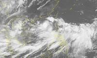 Trinh Dinh Dung: Il faut surveiller de près le typhon Son Tinh