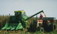 Tarifs douaniers: Washington va aider financièrement les agriculteurs américains