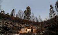Lourd bilan pour la canicule en Europe, incendie menaçant au Portugal